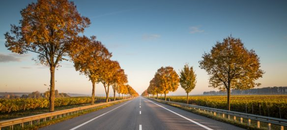 Destinations Extending Their Peak Seasons with 'Work-cation' and 'Roadschooling'